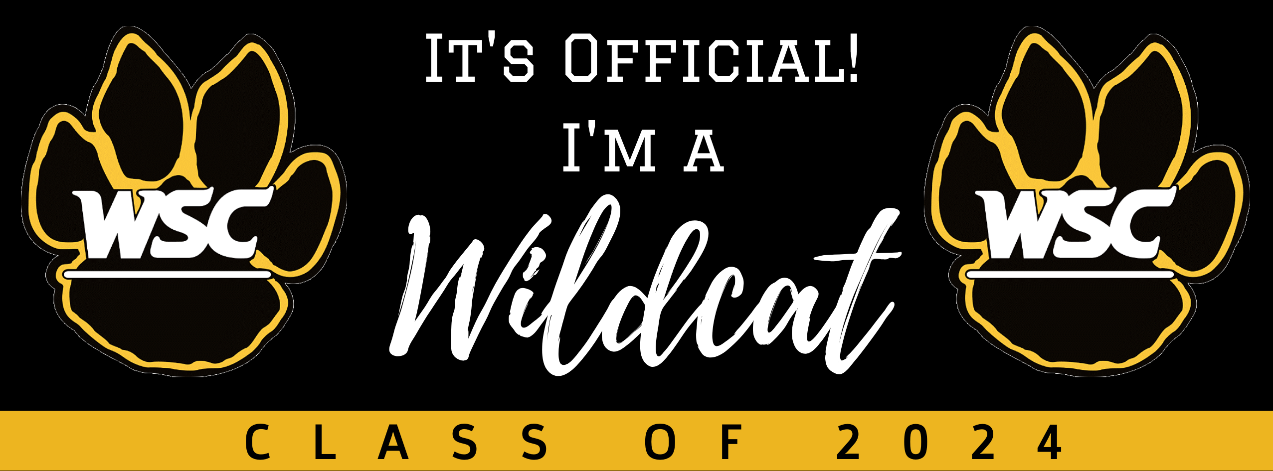 It's official! I'm a Wildcat!