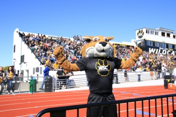Willy the Wildcat shows his school spirit! Go Cats!